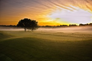 The driving range at dawn