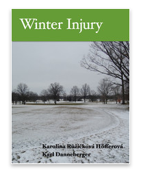 Winter Injury book cover